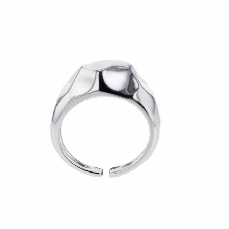 Elements, Multiplicity ring